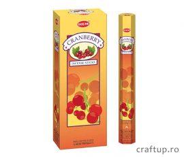 Bețișoare parfumate HEM - Cranberry - craftup.ro
